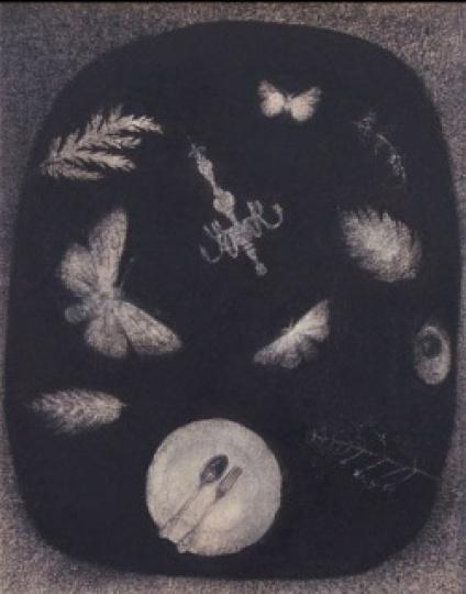 Balsamo, Francesco: Herbária a belsőnek II