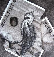 Imre, István jun.: Fragment