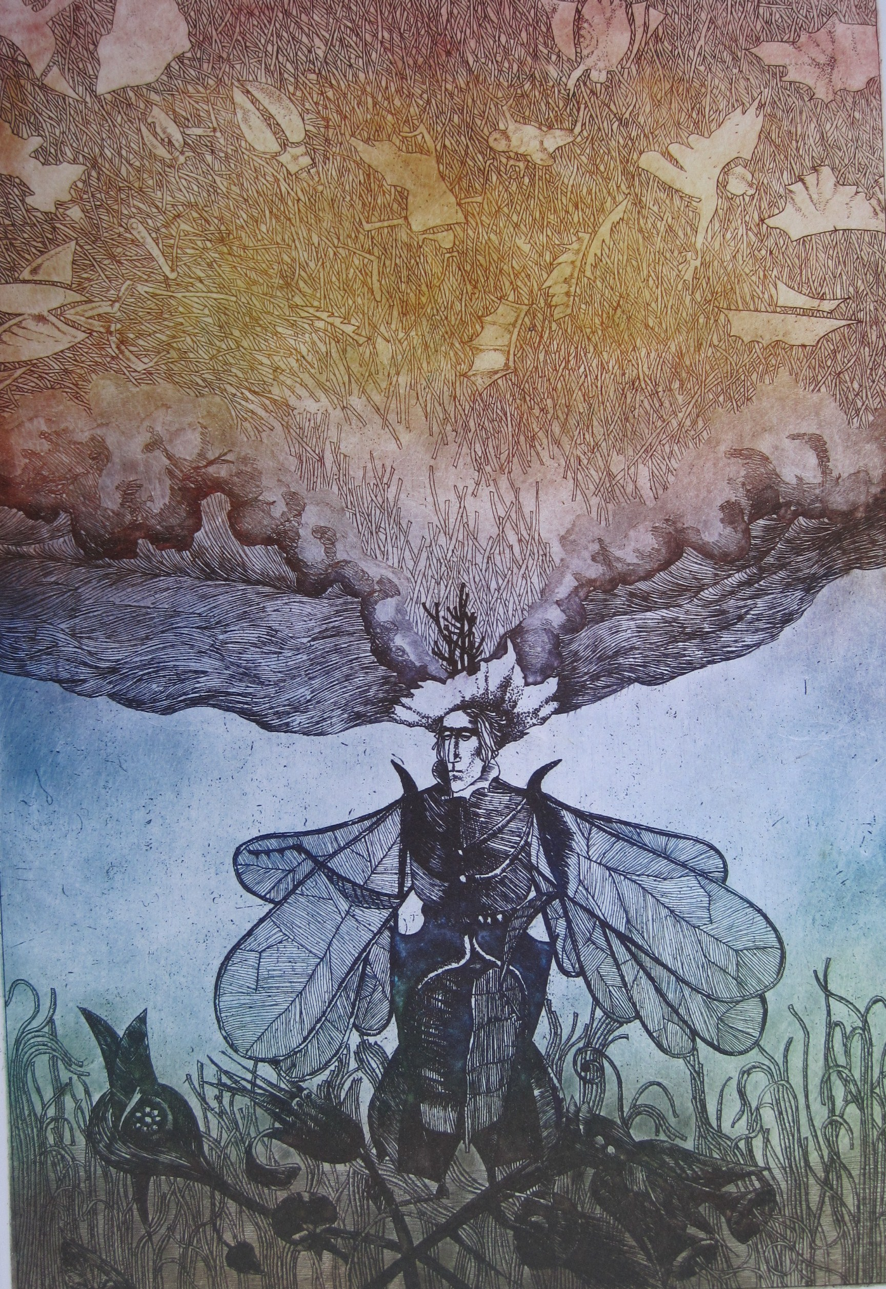 Egresi, Zsuzsa: König der Käfer