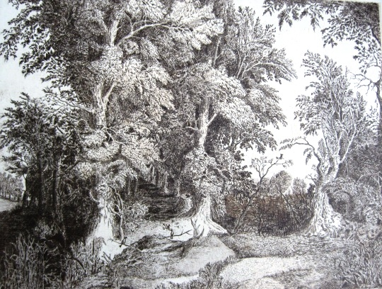 Imre, István jun.: Landscape