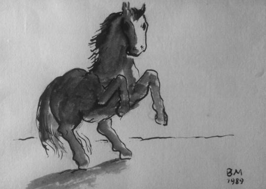 Borsos, Miklós: Jumping horse