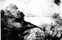Csebi-Pogány, István: Herbsternte in Tihany