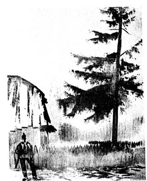 Csebi-Pogány, István: Birke vor dem Szekler-Haus