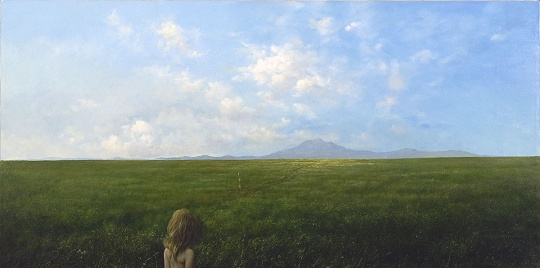 Pajevic, Vladimir: The silence of the Lawn