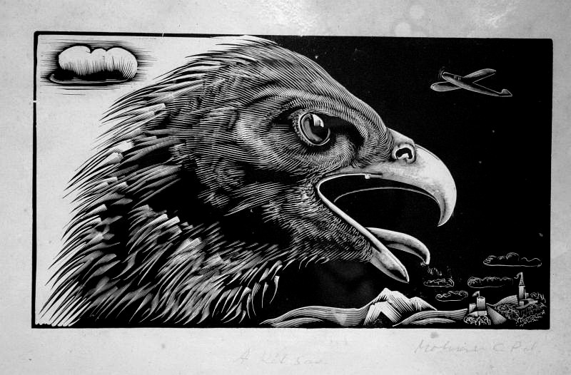 Molnár, C. Pál: Zwei Adler