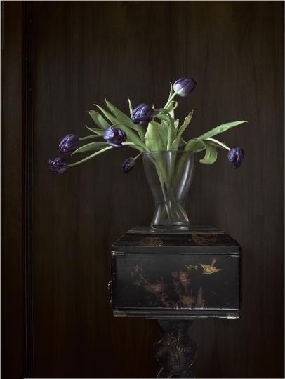 Mészáros László: Tulipánok