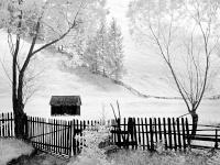 Papp Elek: Kerítés