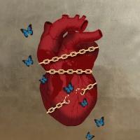Marco Veronese: A tudatosság ereje