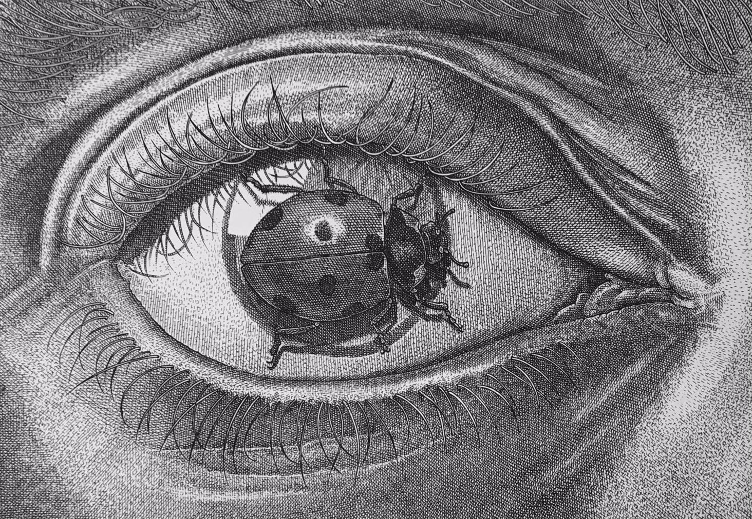 Orosz, István: Eye-Bug