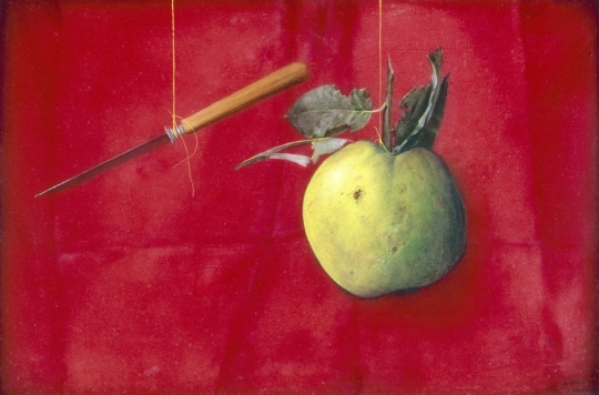 Hús Zoltán: Still life with apple