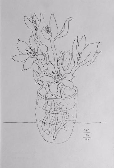 Reich Károly: Virág