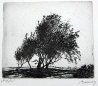 Barcsay, Jenő: Grosser Baum
