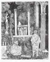 Berki Viola: Apostolok kútja